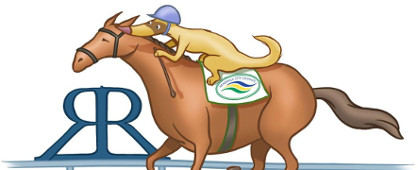 Randwick City Council iFerret logo